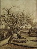 Parsonage Garden in Nuenen, March 1884 Giclée-tryk af Vincent van Gogh