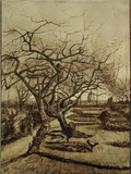Parsonage Garden in Nuenen, March 1884 Giclee Print by Vincent van Gogh