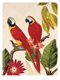 Tropical Red Pair Art by Colleen Sarah