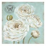 Ranunculus Stamp Prints by Stefania Ferri