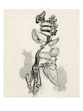 Grand Chapeau Empire (Ladies' hat, France, Empire, 1804-15) Giclee Print by Albert Robida