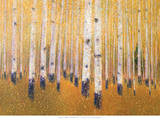 A Portrait Of Aspens Prints by Gary Max Collins