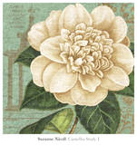 Camellia Study I Posters af Suzanne Nicoll
