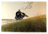 Steam Limited Edition by Wayne Cooper