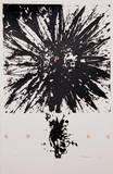Sunflowers- Adagio Edycje premium autor Liu Jian