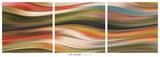Curve 45 (triptych) Posters af J.P. Clive