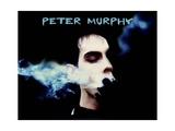 Peter Murphy - Smoke Posters