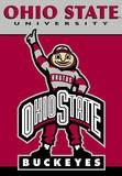 NCAA Ohio State Buckeyes 2-Sided House Banner Flag