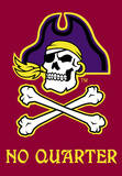 NCAA East Carolina Pirates 2-Sided House Banner Wall Scroll