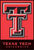 NCAA Texas Tech Red Raiders 2-Sided House Banner Flag