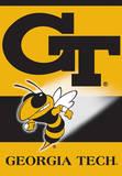 NCAA Georgia Tech Yellow Jackets 2-Sided House Banner Bandera