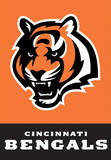NFL Cincinnati Bengals 2-Sided House Banner Flag