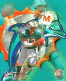 Dan Marino - Portraits Plus Photo