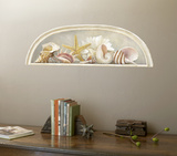 Sea Shell Accent Wall Decal Wallpaper Mural