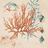 Coral Medley I Prints by Lanie Loreth