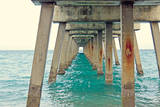 Juno Pier Prints by Lisa Hill Saghini