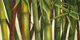 Bamboo on Beige I Kunstdrucke von Patricia Pinto