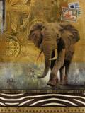 Expedition I Plakater av Patricia Quintero-Pinto