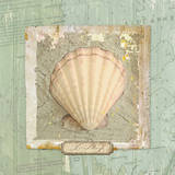 Seashore Collection II Print by Elizabeth Medley