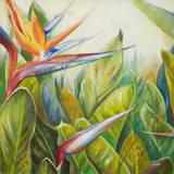 Paradiesvogel II Kunstdrucke von Patricia Pinto