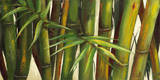 Bamboo on Beige II Poster by Patricia Pinto