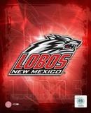 2005 - University of New Mexico / logo Photo