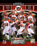 NFL Cincinnati Bengals 2012 Team Composite Photo