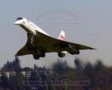 British Airways Concorde 2003 Photo