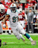 Cameron Wake 2012 Action Photo