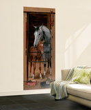 Trompe LOiel Stable Door Wall Accent Huge Mural Art Print Poster Wall Mural
