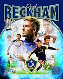 David Beckham 2012 Portrait Plus Photo