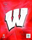 2009 University of Wisconsin Badgers Team Logo Photo