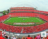 Sanford Stadium Univserity of Georgia Bulldogs 2012 Photo