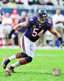 Brian Urlacher 2012 Action Photo