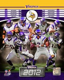 Minnesota Vikings 2012 Team Composite Fotografía