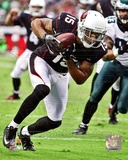 Michael Floyd 2012 Action Photo