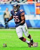 Lance Briggs 2012 Action Photo