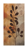 Flora I Giclee Print by Edward Aparicio