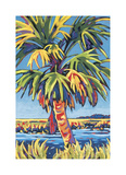 Pine Island Palm Giclee Print by Sally Evans