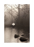 Silvered Morning Pond Giclee Print by Heather Ross