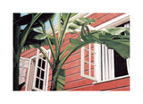 Tropical Breeze Giclee Print by Canning John