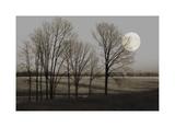 November Moon Giclee-trykk av Heather Jacks