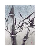 Cool Bamboo I Giclee Print by Katsumi Sugita