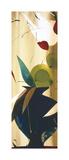 Exotico Oooh II Giclee Print by Lola Abellan
