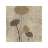 Linen II Giclee Print by  Maja