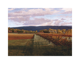 Vaucluse Giclee Print by Kent Lovelace