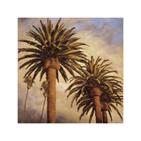 Fog over Canary Palms Giclee Print by Rick Garcia