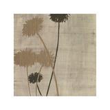 Linen I Giclee Print by  Maja