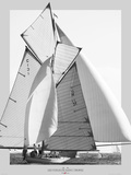 Les Voiles de Saint Tropez Art by Philip Plisson