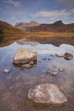 Blea Tarn and the Langdale Pikes in the Lake District National Park, Cumbria, England, UK Photographic Print by Julian Elliott